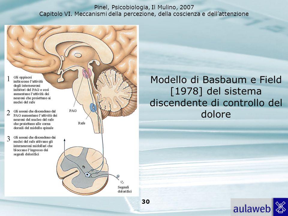 Modello di Basbaum e Field [1978] del sistema discendente di controllo del dolore